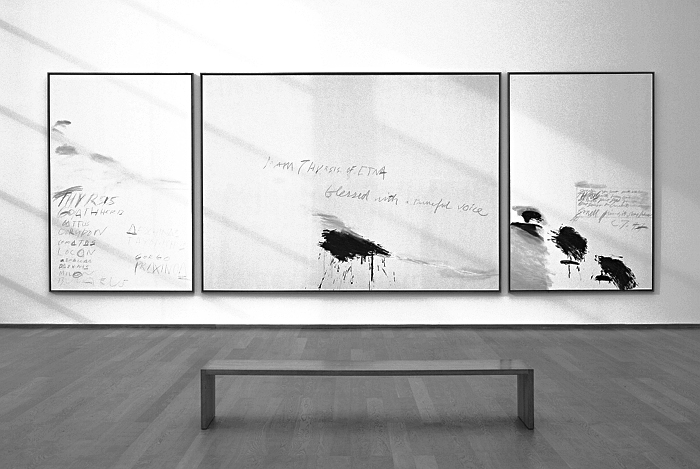 Fabian Frhlich, Berlin, Hamburger Bahnhof, Cy Twombly, I Am Thyrsis of Etna