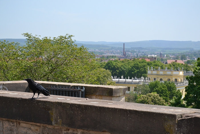Fabian Fröhlich, Kassel, Blick vom Eingang des Ehrenmals auf die Orangerie