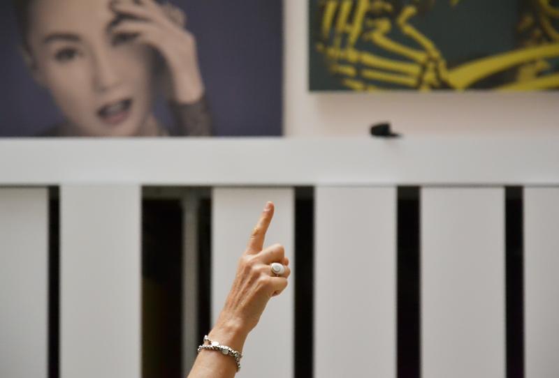 Yan lei, Limited Art Project, documenta 13