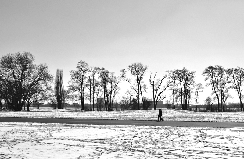Tempelhofer Park, Winter,