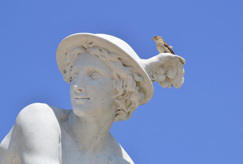 Sanssouci, Merkur von Jean Baptiste Pigalle (Kopie von Wolfgang Wille) am Französischen Rondell