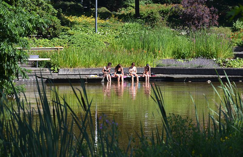 Planten un Blomen, Teich, Hamburg