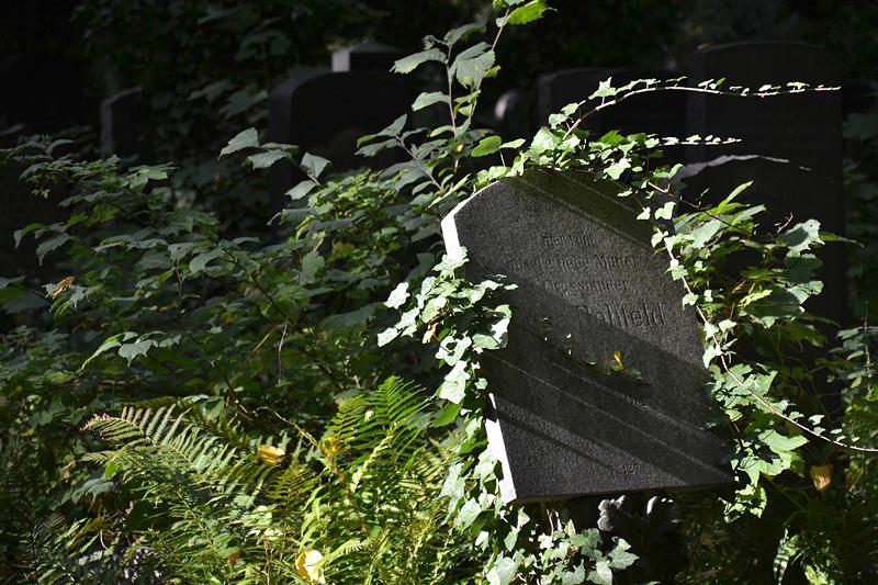 Jüdischer Friedhof Berlin Weißensee, Grabstein Rehfeld