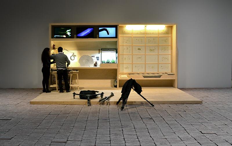 Biennale 2013, Arsenale, Italian Pavilion, Elisabetha Benassi, The Dry savages; Gianfranco Baruchello, Piccolo Sistema