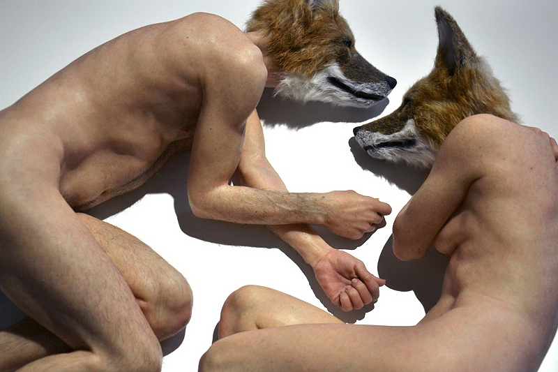 Personal Structures, Venice, Biennale 2013, Sam Jinks, Unsettled Dogs