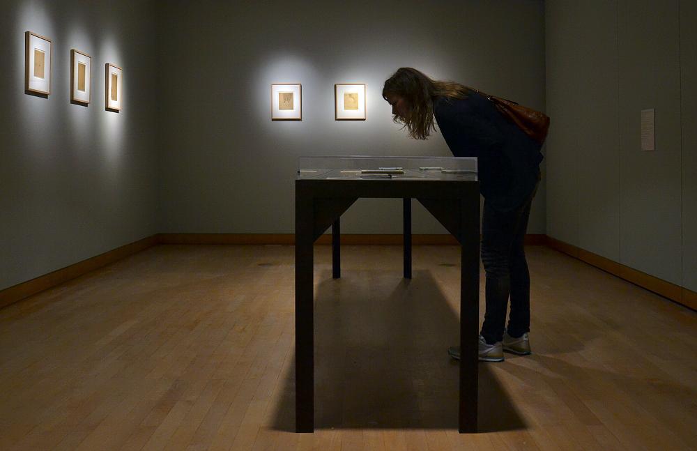 8. Berlin Biennale, Museen Dahlem, Natasha Ginwala, Double Lives