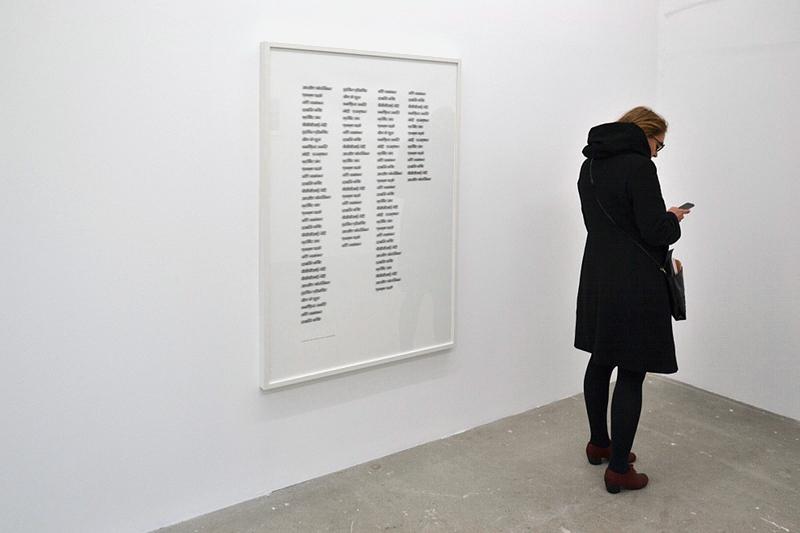 Berlin Biennale 2014, Kunst-Werke, Shilpa Gupta