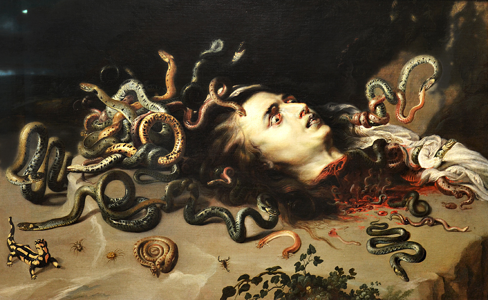 Kunsthistoriesches Museum Wien, Rubens, Medusa
