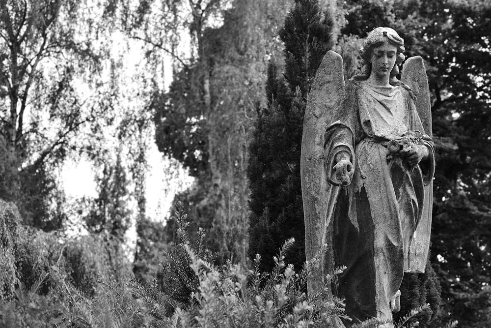 Alter Luisenstädtischer Friedhof, Engel