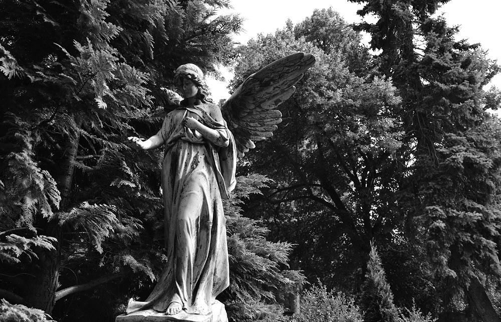 Alter Luisenstädtischer Friedhof, Otto Martin