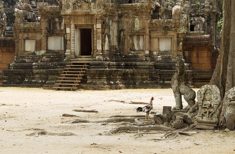 Angkor, Chaosay Tevada