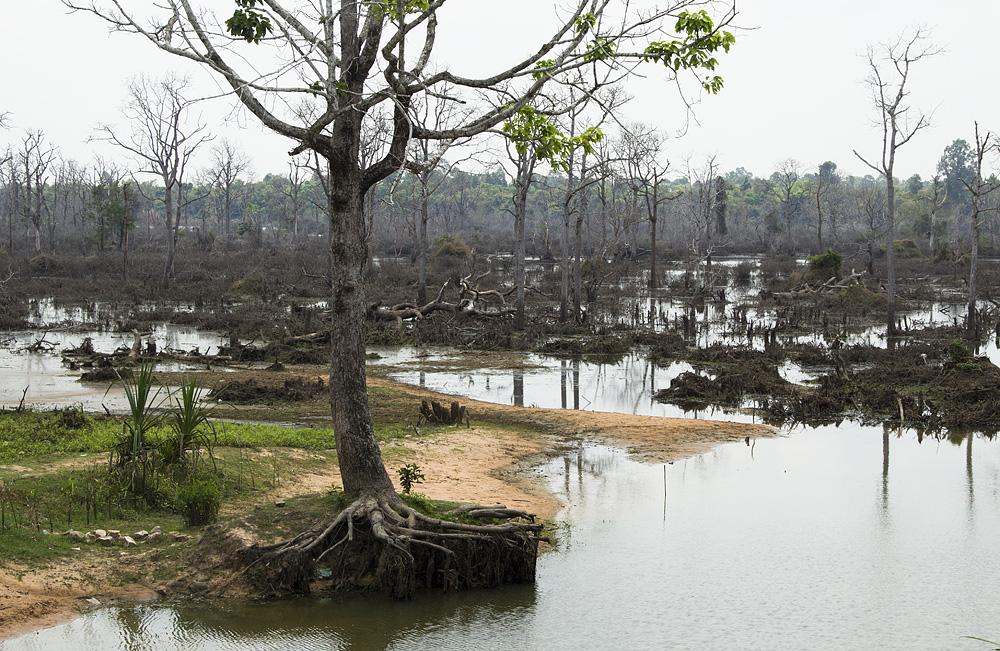 Angkor, Nördlicher Baray