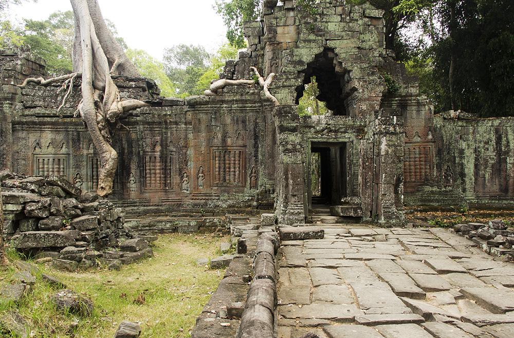Angkor, Preah Khan, Würgefeige
