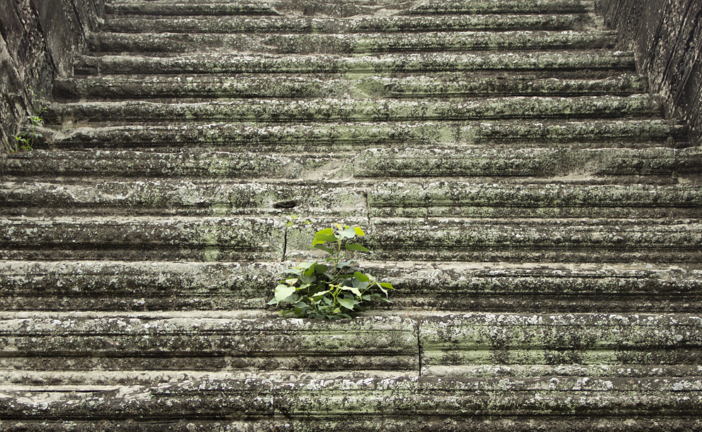 Angkor Wat, Treppe