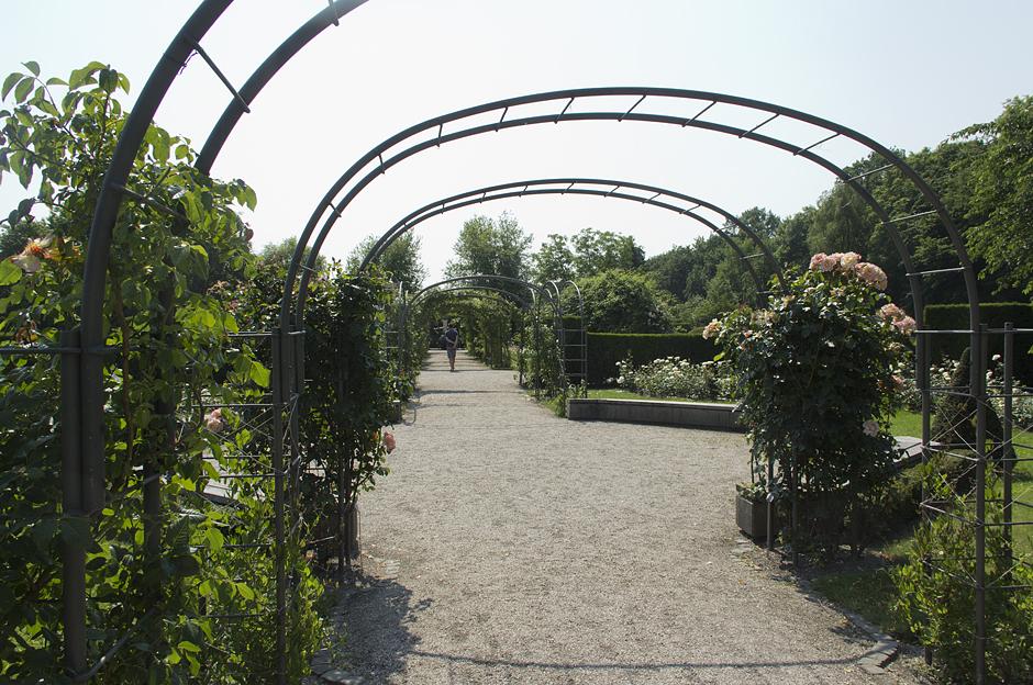 Britzer Garten, Rosengarten