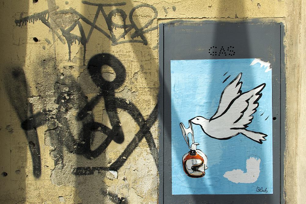 Street Art, Firenze, Blub, L'arte Sa Nuotare, Picasso, Dove