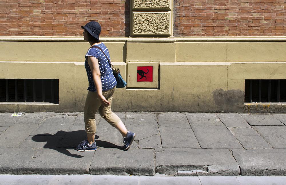Street Art, Firenze, Via della Chiesa, Dog