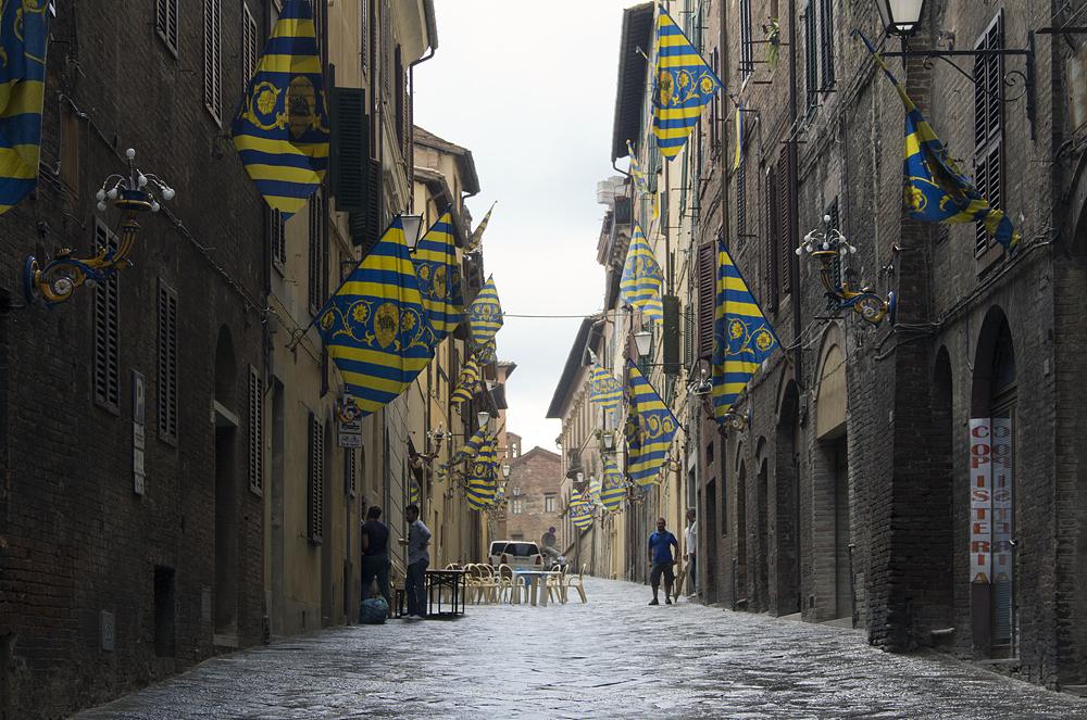 Siena, Palio, Contrada della Tartuca