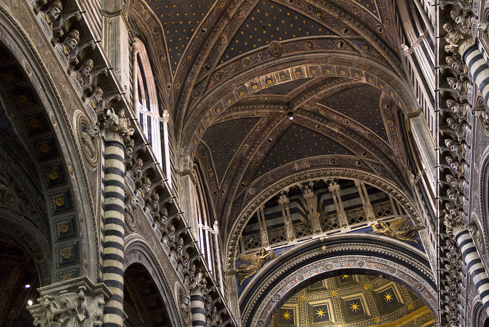 Siena, Duomo di Siena, Decke des Kirchraums