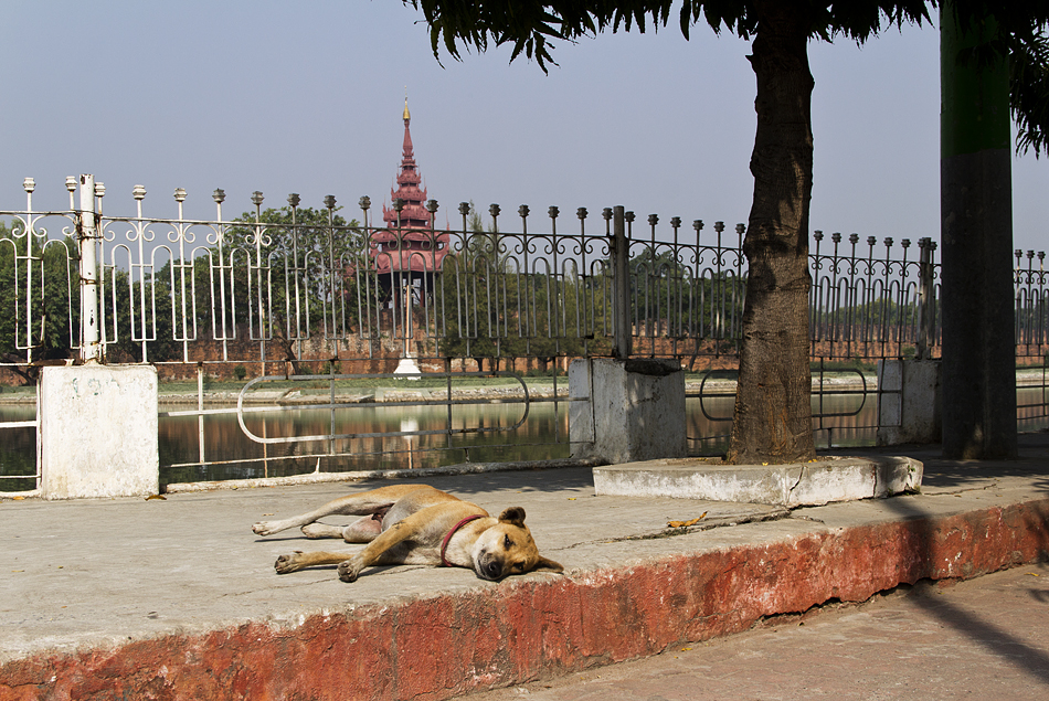 Mandalay, Myanansankyaw Golden Palace
