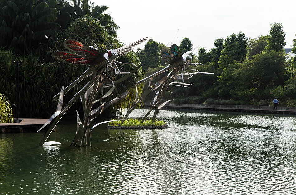 Fabian Fröhlich, Singapore, Gardens by the Bay, Dragonfly Lake