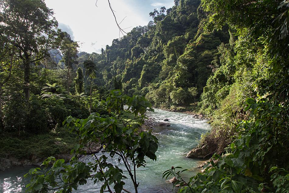 Bohorok River, Gunung Leuser National Park, Rainforest, Sumatar, Fabian Fröhlich