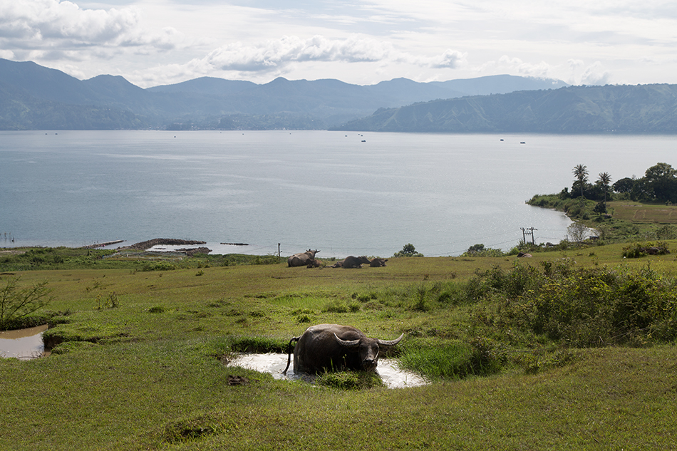 Fabian Fröhlich, Lake Toba, Samosir,  Bukit Beta