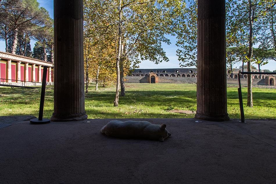 Pompei, Palestra Grande