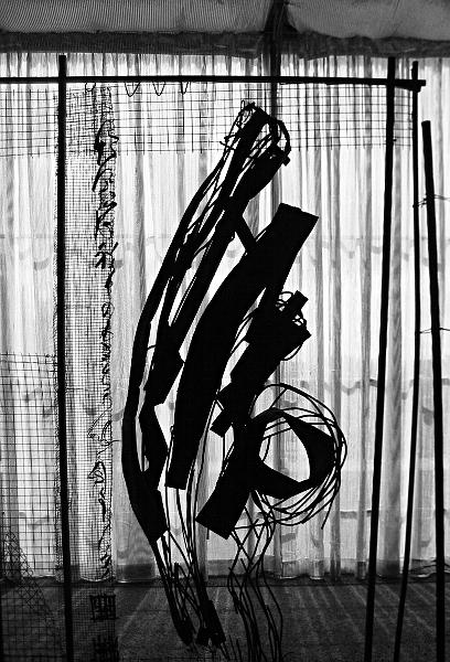 Fabian Fröhlich, documenta 12, Dmitri Gutov, Fence