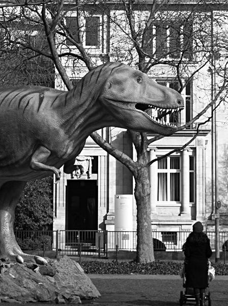 Fabian Fröhlich, Tyrannosaurus, Frankfurt