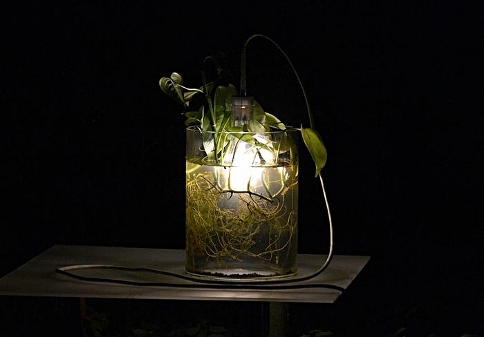 Fabian Fröhlich, Kassel, Insel Siebenbergen, Lichtinseln, Miriam Aust, Vase und Leuchten