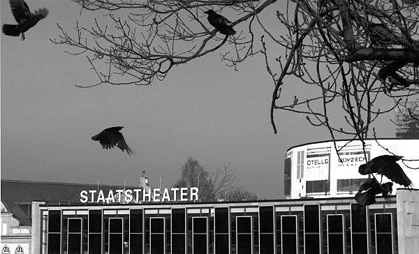 Fabian Fröhlich, Kassel, Staatstheater