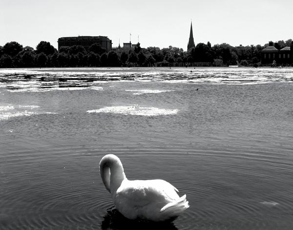 Fabian Fröhlich, London, Kensington Gardens, Round Pond