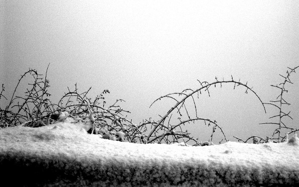 Marburg, Schlossmauer, Winter