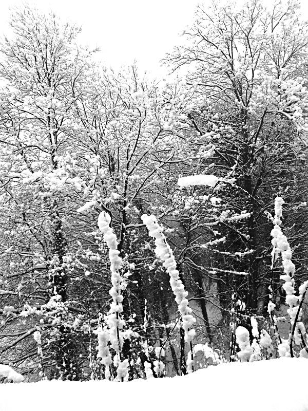Fabian Fröhlich, Marburg, Winter