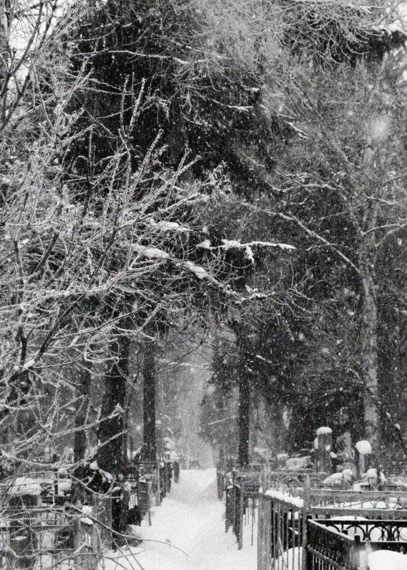 Nowgorod, Friedhof in der Nähe von Wolotowo