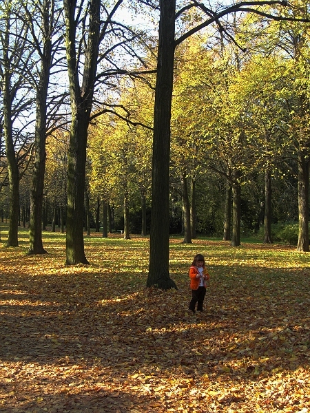 Fabian Fröhlich, Potsdam, Schloss Sanssouci, Herbst