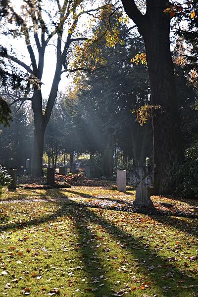 Fabian Fröhlich, Kassel, Hauptfriedhof, Sonnenstrahlen
