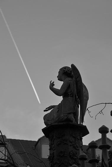 Fabian Fröhlich, Kassel, Engel auf dem Reichenbach-Grabmal am Lutherplatz