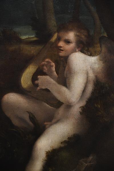 Fabian Fröhlich, Berlin, Gemäldegalerie, Coreggio, Leda und der Schwan (Amor)