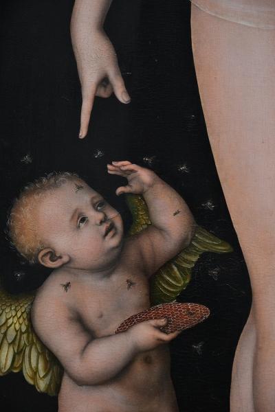 Fabian Fröhlich, Berlin, Gemäldegalerie, Lucas Cranach d.Ä., Venus und Amor als Honigdieb
