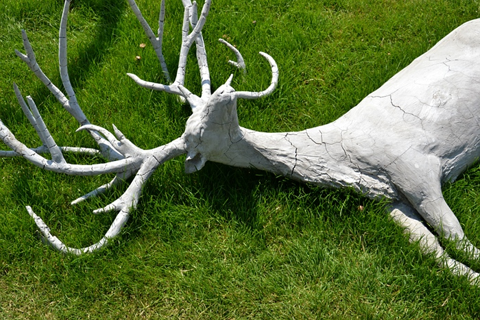 Fabian Fröhlich, Kassel, Weinberg, dOCUMENTA (13), Adriàn Villar Rojas, Return the World, Deer
