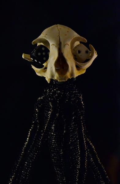 Fiona Hall, Fall Prey, Skull, documenta 13, Fabian Fröhlich, Kassel