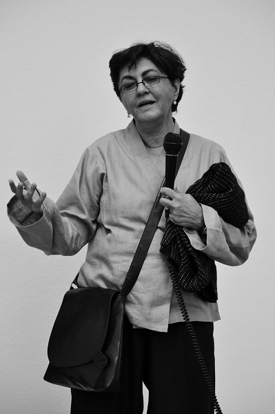dOCUMENTA (13), Portrait Nalini Malani
