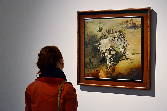 dOCUMENTA (13), Salvador Dalí, Le grand paranoiaque, Fabian Fröhlich, Kassel