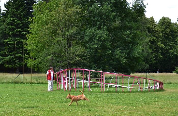 Brian Jungen, Dog Run, documenta 13, Karlsaue, Fabian Fröhlich, Kassel