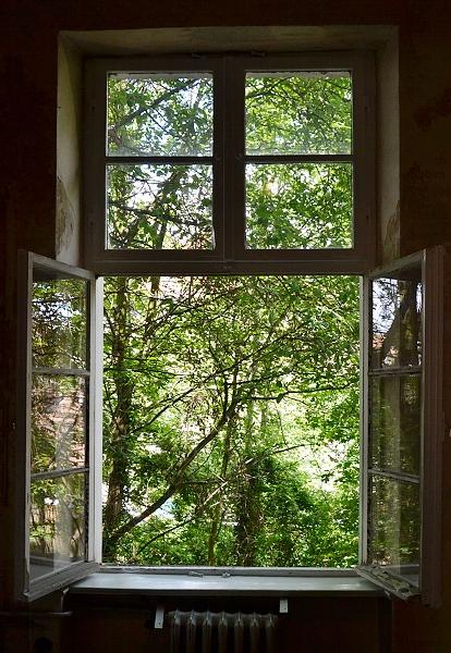 Theaster Gates, 12 Ballads for the Huguenot House (Hugenottenhaus), backyard, documenta 13, fabian Fröhlich, Kassel