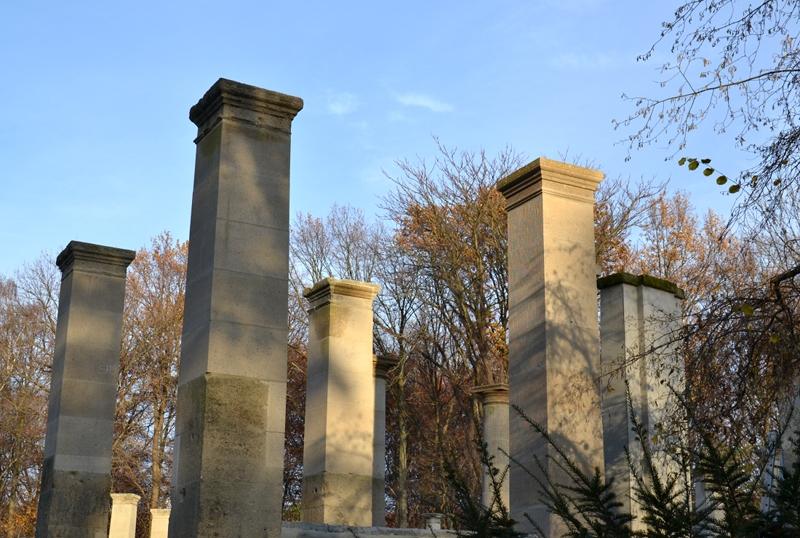 Berlin Tiergarten, Pergola im Rosengarten, Herbst, Fabian Fröhlich