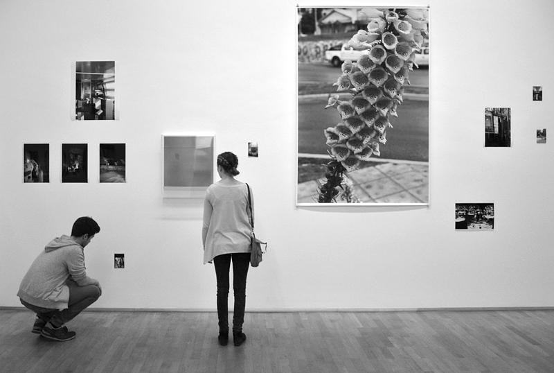 MMK Frankfurt, Wolfgang Tillmans, Frankfurt Installation, Fabian Fröhlich
