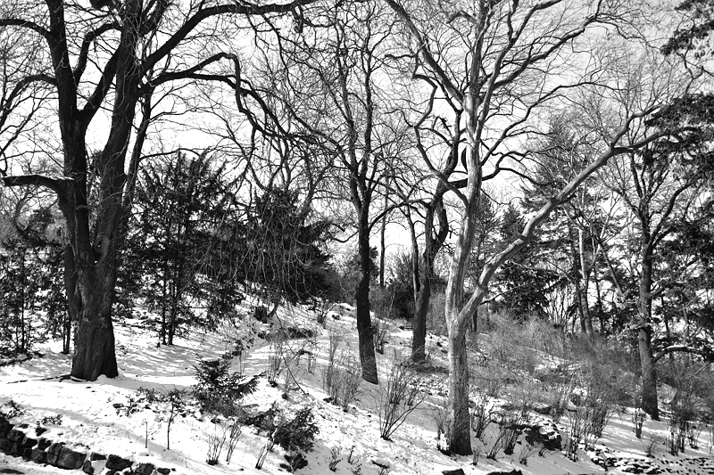 Berlin Kreuzberg, Viktoriapark, Winter, Fabian Fröhlich